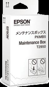 C13T295000 - Maintenance Box
